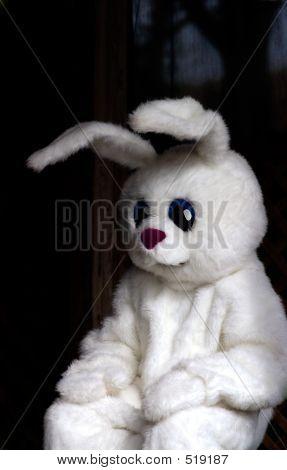 Easter Bunny Kostüm