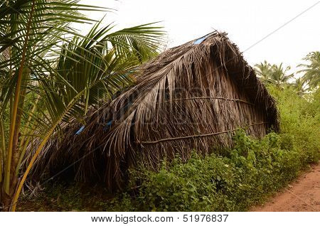 Grass shack in the jungle