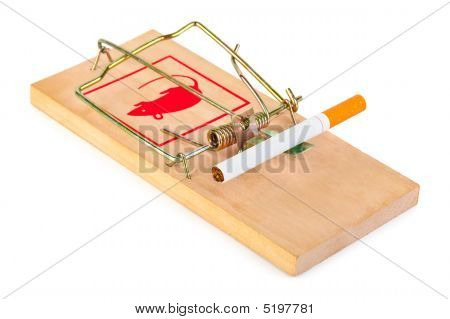Mousetrap and cigarette isolated on white background poster