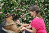 Teen girl  in the garden with dog.  Near Kiev,Ukraine poster