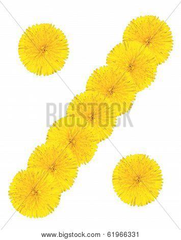 Percent Mark Made From Dandelion Flower
