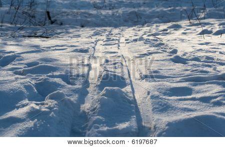 Ski Track On The Snow