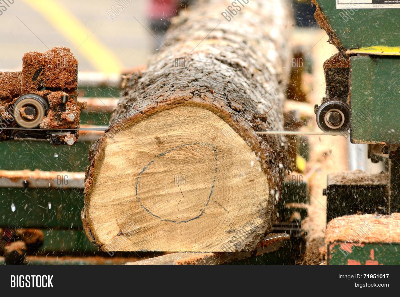 Portable Sawmill Image & Photo (Free Trial) | Bigstock