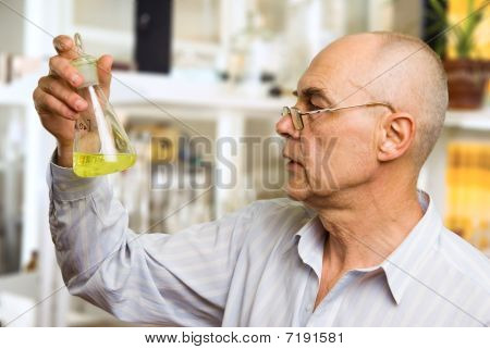Scientist In Chemical Lab