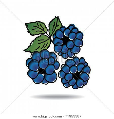 Freehand drawing dewberry icon - vector eps 10 illustration