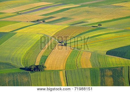 Aerial view of agricultural fields poster
