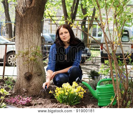 Woman Work In Yard Gardening