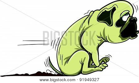 Cartoon pug dog scraping its bum. Isolated on white