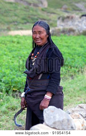 Tibetan woman working in fields