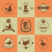 Set of poultry farm logo and emblem. poster