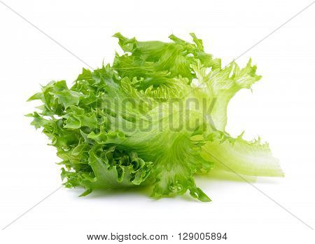 A fresh lettuce leaves on the white background