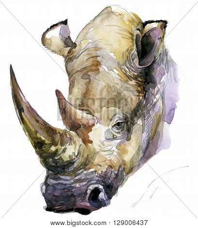 Rhinoceros. Rhinoceros watercolor. African animal hand drawn illustration. Rhinoceros watercolor background. Rhinoceros T-shirt print