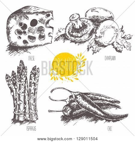 Series - vector fruit, vegetables and spices. Hand-drawn illustration in vintage style. Sketch. Healthy food. Linear graphic. Set of cheese, asparagus, mushroom, chili.