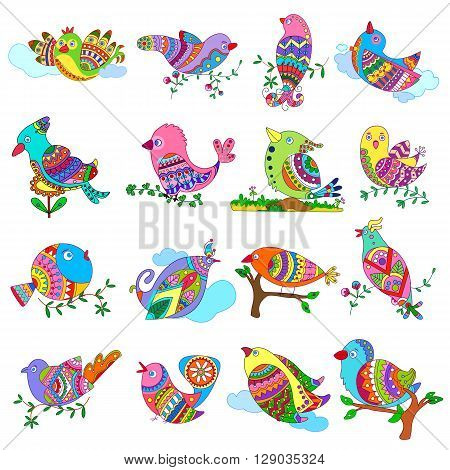 vector illustration of collection of colorful bird for designing