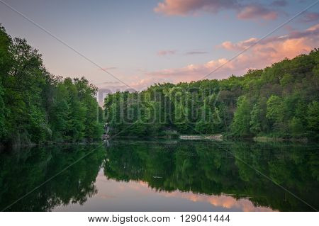 Green forest, a lake and a sunset sky with pink clouds
