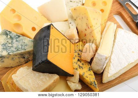 Various types of cheese . close up