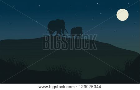 Silhouette oof elephant at the night in hills