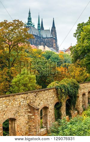 Prague autumn landscape view to saint vitus cathedral