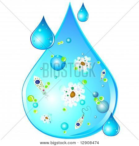 Different realistic germs inside drop of dirty water, isolated poster