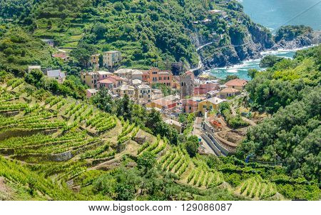 Monterosso in Cinque Terre, Italy, view at the town from mountain trail