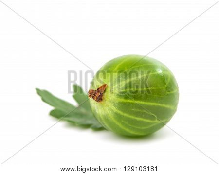 gooseberries isolated on a white background market, vegetarian,