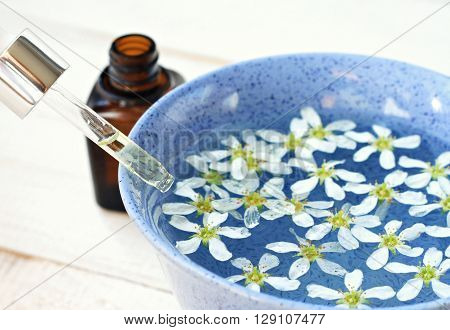 Herbal aromatherapy spa setting. Adding essential oils to flower water in blue bowl.