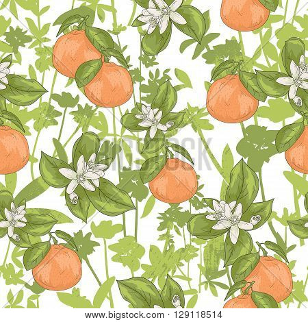 Seamless summer floral pattern. Vector background with flowers and tangerines.