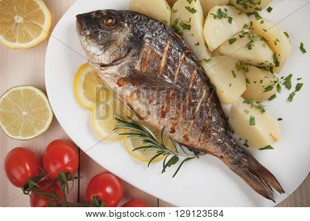 Grilled Sparus Aurata or gilt-head bream fish with bolied potato