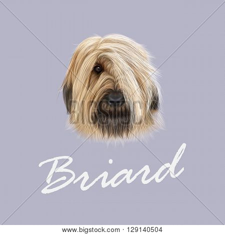 Vector Illustrated Portrait of Briard dog. Cute face of fluffy dog on blue background
