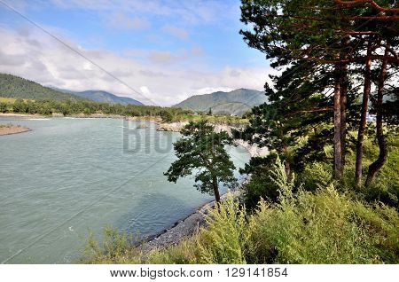 View of the Katun river. Russia Altai Republic