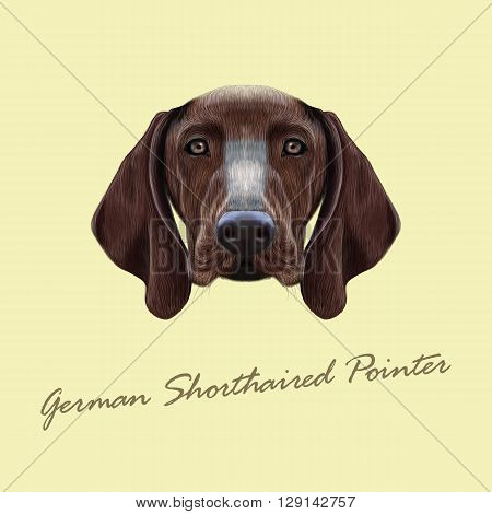 Vector Illustrated portrait of German Shorthaired Pointer dog. Cute brown face of domestic dog on yellow background