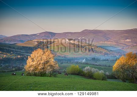 Spring Landscape Of Small Village