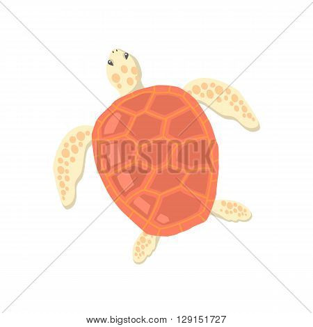 Turtle isolated on white background design flat. Tortoise with a big red carapace. The head and fins are covered with turtles speckled pattern. Creature  wildlife of wold world. Vector illustration