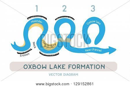 Oxbow lake formation, vector diagram