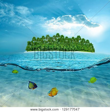 Beautiful alone island in ocean and underwater world with exotic fishes