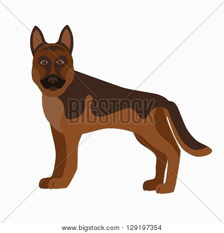 Flat german shepherd pet illustration. Standing cute dog vector. Flat dog animal pet vector icon. Cartoon standing german shepherd in flat style. Dog colorful silhouette isolated on white background