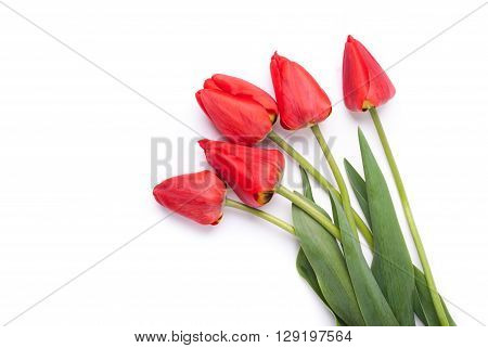Bouquet of red tulips on a white background.