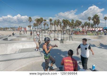 Venice Beach California USA - October 6 2015;  Skaters discuss the action at Skate Park Venice Beach with famous palm trees and boardwalk in distance.