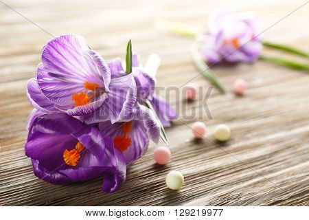 Beautiful crocus flowers with beads on wooden table closeup