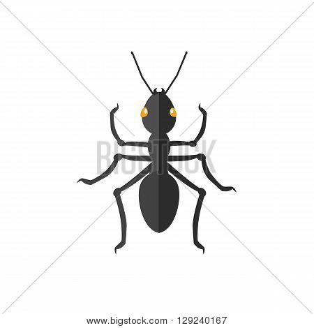 Ant icon flat design. Ant isolated on white background. Vector illustration