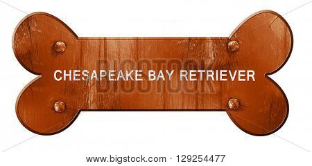Chesapeake bay retriever, 3D rendering, rough brown dog bone