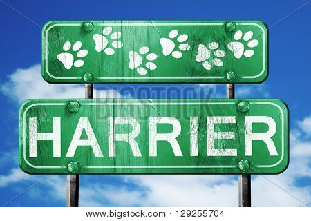 Harrier, 3D rendering, rough green sign with smooth lines