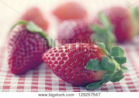 Strawberries on red and white chequered table cloth with creamy vintage editing