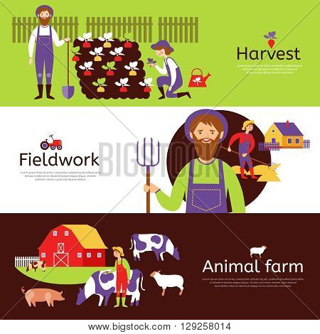 Fieldwork harvesting and livestock animals farm 3 flat horizontal banners in countryside colors abstract isolated vector illustration