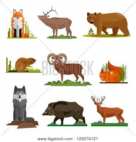 Mammal animals vector set in flat style design. Zoo cartoon icons collection. Fox, bear, wolf, dear.
