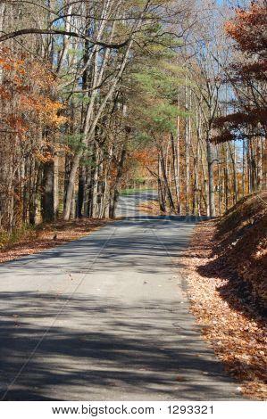 Rolling Road