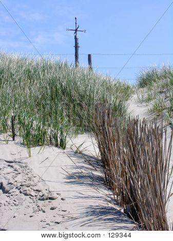 Dune, Grass & Signpost