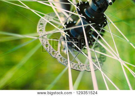 Bicycle Wheel Background. Close Up Spokes Wheel