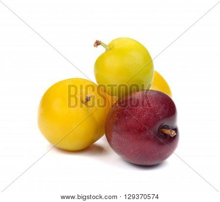 YellowRed Ripe plum isolated on white background.