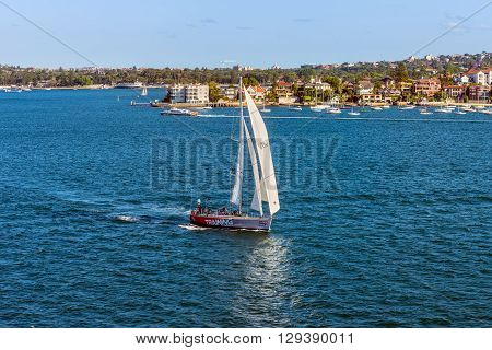 Sydney Australia - November 12 2014: Sailboats cruising near the Point Piper Sydney New South Wales Australia. Point Piper is a small affluent harbourside eastern suburb of Sydney.